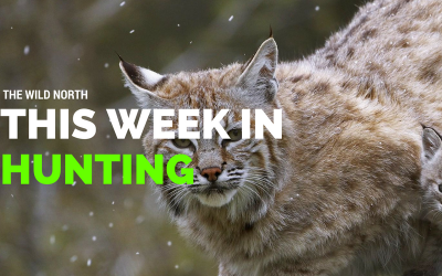 This Week in Hunting – Feb 5 2016